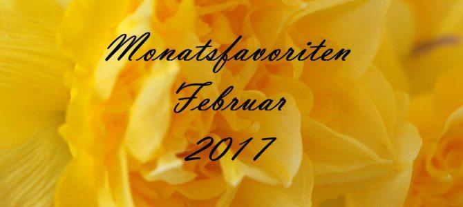 Meine #Monatsfavoriten Februar 2017 mit Rival de Loop, L'Oréal & Co.