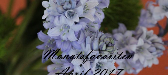 Monatsfavoriten | April 2017 mit alverde Naturkosmetik