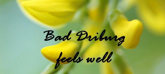 Bad Driburg feels well: ein Wochenende im Gräflicher Park Grand Resort