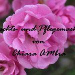 Chiara Ambra: Masken-Sonntag mit pflegenden Masken