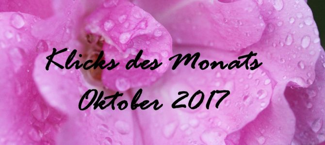 Klicks des Monats Oktober 2017 | wenig Geld und umweltbewusst essen, waschen ohne Weichspüler & mehr