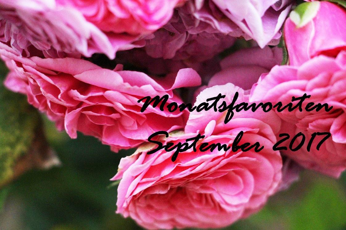 monatsfavoriten-september-2017-header-das-leben-ist-schoen