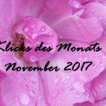 Klicks des Monats November 2017   Isana, der Serenvergleich und tolle DIY-Ideen