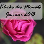 Klicks des Monats Januar 2018 | exklusive Sneaker mit BVG-Sitzmuster
