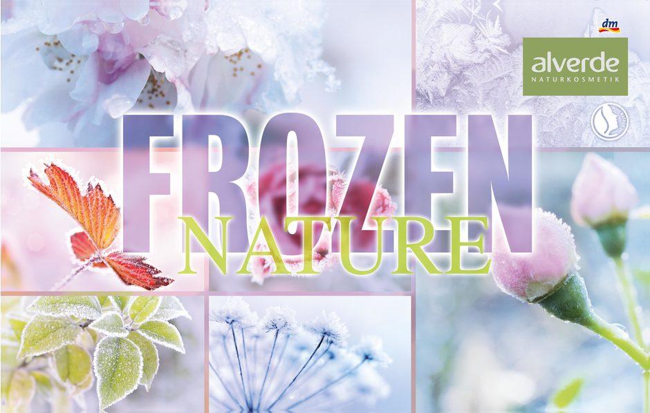Header_frozenNature