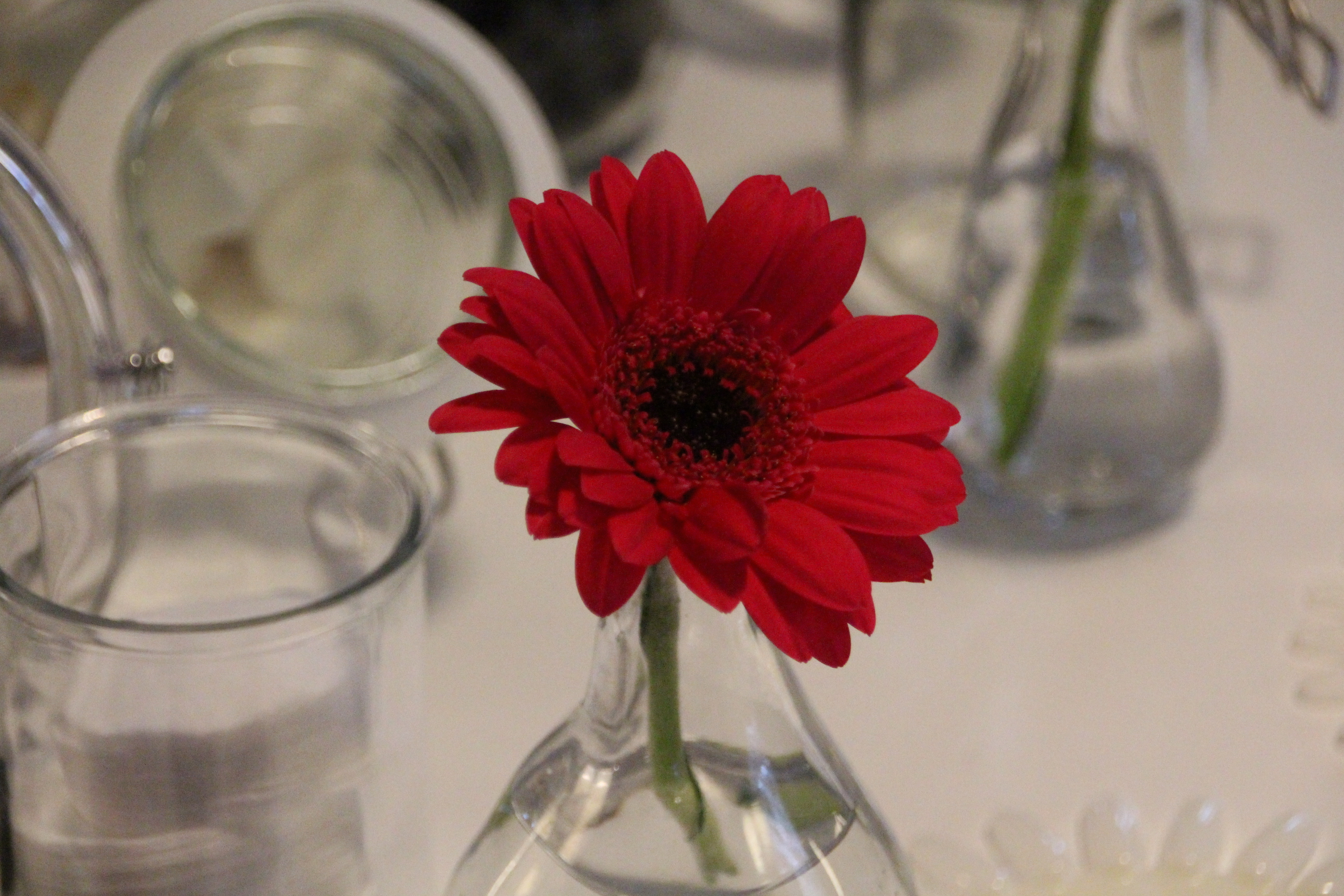 Event: Beauty-Blogger-Cafè im Oktober 2015 #BBC2015