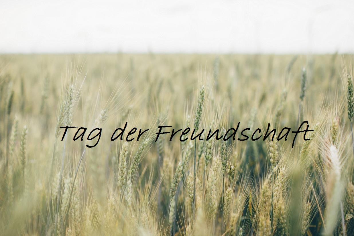 Tag der Freundschaft_Weizenfeld_Header_neu