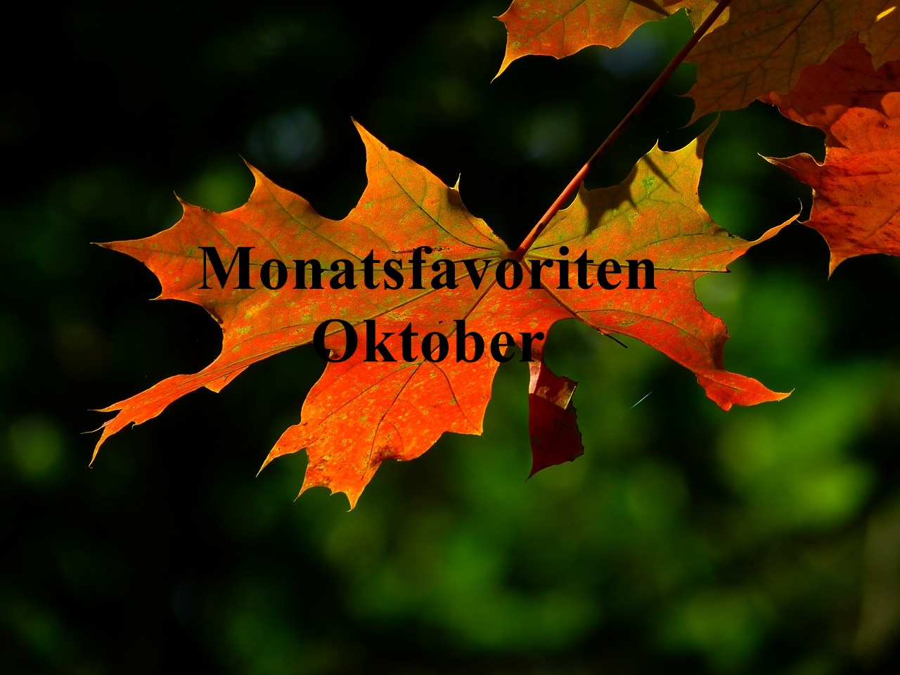 monatsfavoriten-oktober-2016_header