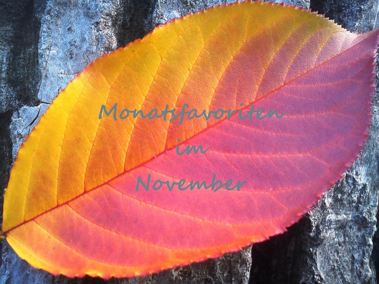 monatsfavoriten_november_header_2016