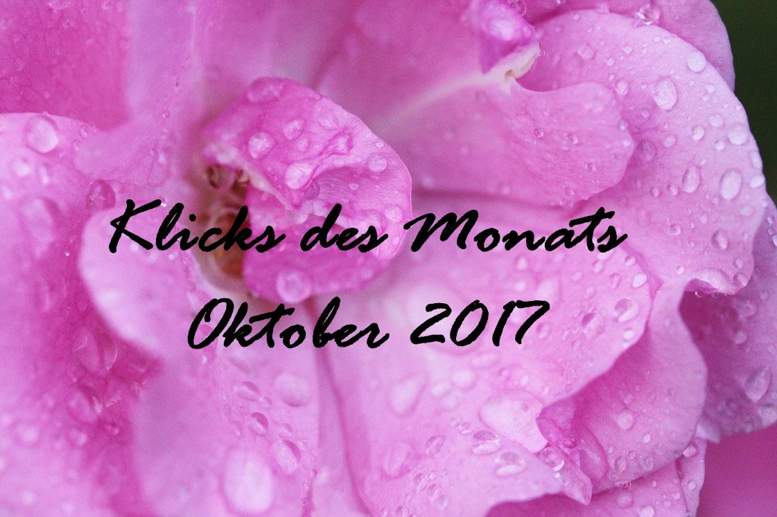 Klicks des Monats Oktober 2017   wenig Geld und umweltbewusst essen, waschen ohne Weichspüler & mehr