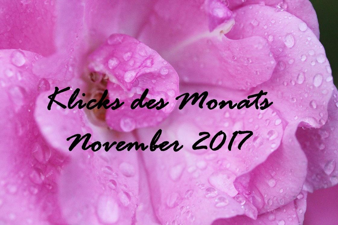 Klicks des Monats November 2017 | Isana, der Serenvergleich und tolle DIY-Ideen