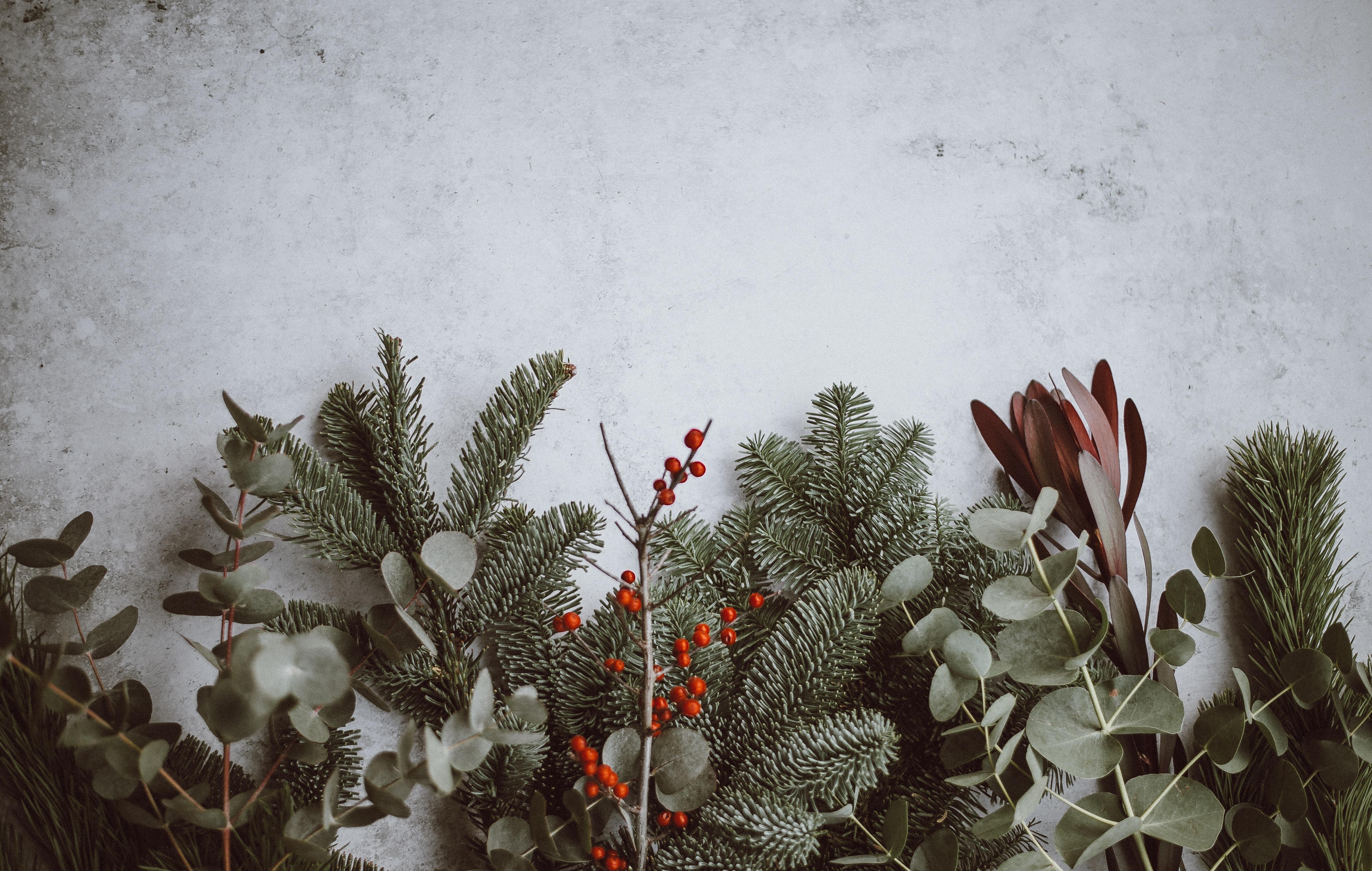 {Adventskränzchen 2019} So duftet Weihnacht